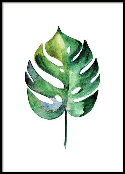 Monstera Aquarell Two Juliste ryhmässä Julisteet  / Koot / 50x70 cm @ Desenio AB (10070)