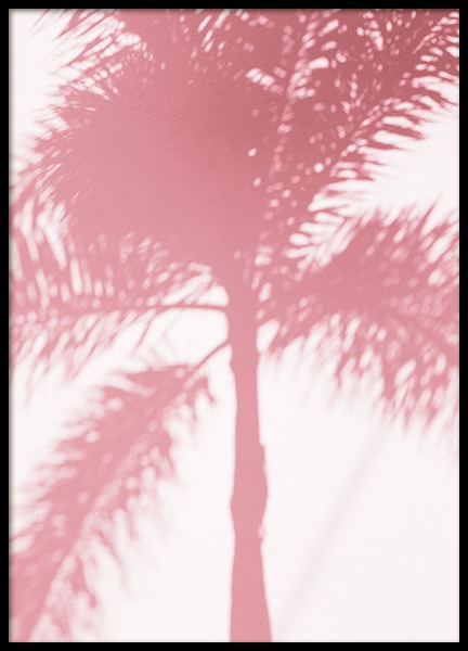 Pink Palm Shadow Juliste ryhmässä Studio Collections / Studio Coast to Coast / Miami @ Desenio AB (10768)