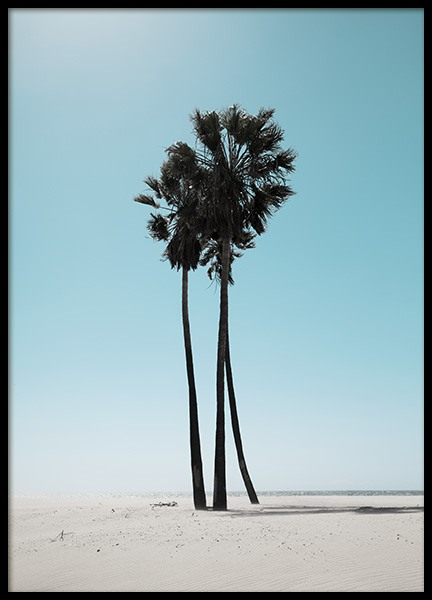 LA Beach Palms Juliste ryhmässä Studio / Coast to coast / Studio Los Angeles @ Desenio AB (10784)