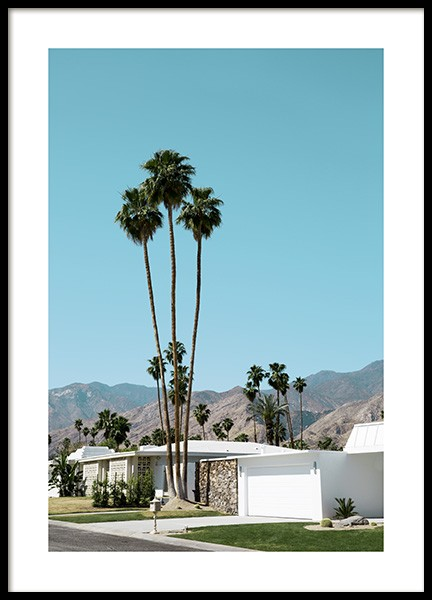 Street of Palm Springs Juliste ryhmässä Studio Collections / Studio Coast to Coast / Palm Springs @ Desenio AB (10790)