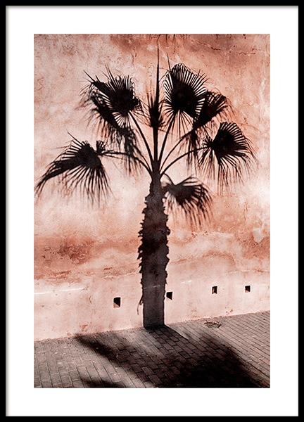 Palm Tree Shadow Juliste ryhmässä Julisteet  / Koot / 50x70 cm @ Desenio AB (12600)