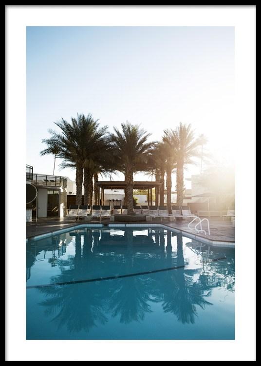Hotels In Palm Springs >> Palm Springs Hotel Juliste
